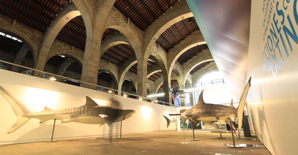 exhibit-design2