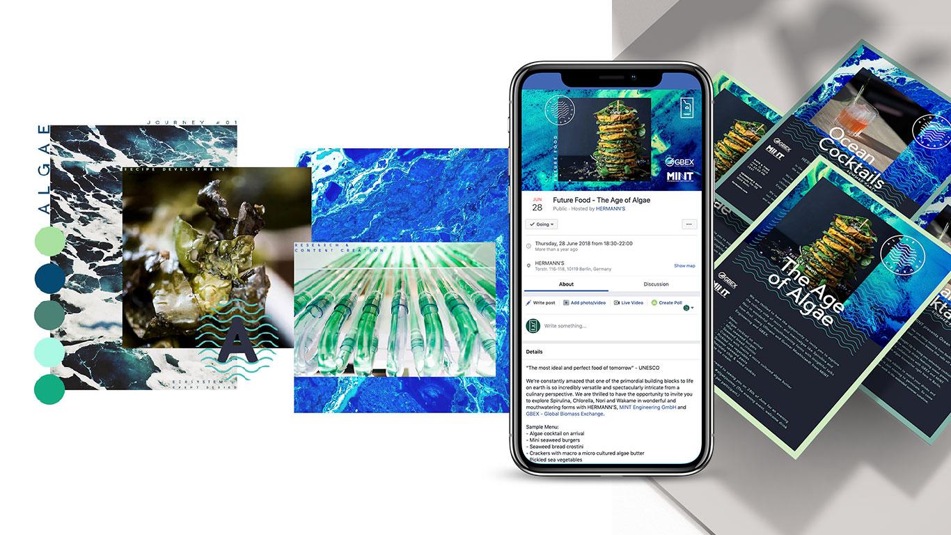 algae-journey2